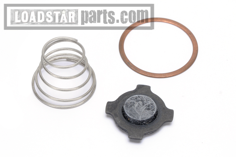 Check Valve Repair Kit